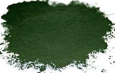 500g Chlorella Pulver, ohne Zusätze  +  Zertifikat