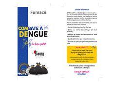 Campanha_Combate à Dengue 2015_PMTS no Behance Behance, Killing Gnats, Campaign