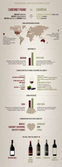 #infography: Carbenet franc VS Cariñena. We analyzed two red which arouse mixed passions ... #clubtorres