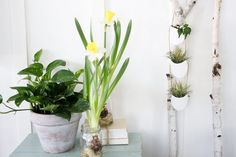 Put the rest back in restroom with budget-friendly DIY projects that'll transform your bathroom from a humdrum space to a spa-like sanctuary. From a bath caddy that'll hold your wine glass to all-natural scented wax bars to a pretty floral arrangement, all that's missing from your newfound retreat is a glass of [fruit-infused...
