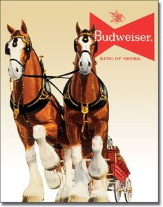 Budweiser Brewery in St. Louis ~