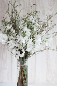 「雪柳とスイトピーのブーケ」 先週末は土日共に自宅にお呼ばれの予定があったので、手土産にとお花を用意していました。 結局、色々あって自宅用に。 雪柳のスイトピー。 白でシンプルに。 この組み合わせ、結構好きです♪ #雪柳 #スイトピー #ブーケ #花束 Love Flowers, Fresh Flowers, Dried Flowers, Flower Arrangement Designs, Flower Arrangements, Cascade Bouquet, Spring Wedding, Wedding Bouquets, Glass Vase