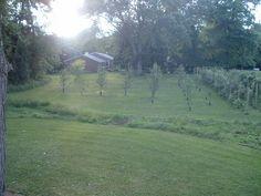 Ablin Acre Orchard & Vineyard.