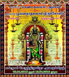 KOVILPATTI SHENBHAGAVALLI AMMAN: பங்குனி பெருந்திருவிழா