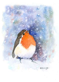 Rachel Mcnaughton - Robin Watching Snow