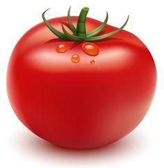 Cómo ilustrar un tomate en Adobe Illustrator