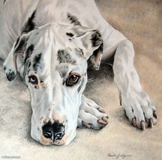 35 Beautiful Dog Paintings and from top artists around the world | Read full article: http://webneel.com/dog-paintings | more http://webneel.com/paintings | Follow us www.pinterest.com/webneel