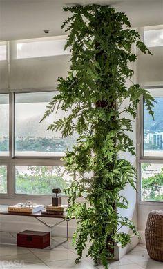 O jardim traz mais alegria para o lar! Confira 10 maneiras de criar seu próprio jardim vertical.