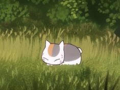Natsume Takashi, Pokemon Dragon, Hotarubi No Mori, Anime Backgrounds Wallpapers, Natsume Yuujinchou, Like Image, Funny Video Memes, Mystic Messenger, Comics