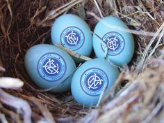 Happy Easter New York City FC
