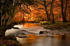Walkham is a river whose source is on Dartmoor, Devon, England
