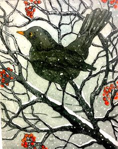 A dust of Snow, blackbird , etching and aquatint by Sally Winter A selection of bird photos Funny Bird Pictures, Watercolor Bird, Bird Design, Linocut Prints, Gravure, Bird Art, Art Techniques, Folk Art, Art Drawings