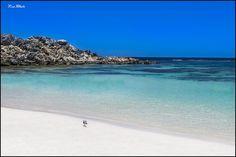 Rottnest Island - Whitest Beaches