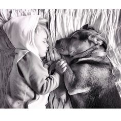 Bedtime Buddies An Adorable Slumber Series By Jessica Shyba - Theo beau cutest animal human pairing ever