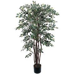 4' Ruscus Silk Tree