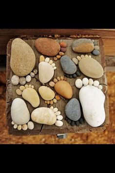 Rock Feet Stepping Stone