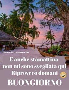 Good Morning Good Night, Humor, Plants, Facebook, Link, Happy, Smile, Mother Teresa, Buen Dia