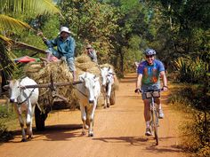 Experience a cycling thrill like no other with Backroads through Vietnam and Cambodia, from Hanoi to Angkor Wat. http://www.backroads.com/trips/BVII/vietnam-cambodia-biking-tour?p=D546 #asiatravel #biketour