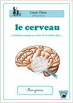 Le cerveau - Nous en avons chacun un, doté de surprenantes compétences et d'aptitudes très différentes. Qu'est-ce que la mémoire ? Comment s'organise mon intelligence ? Un handicap peut-il cacher un don exceptionnel ? Qu'est-ce qu'un réseau de neurones et comment s'organise-t-il ? Suis-je plus performant avec le cerveau droit ou cerveau gauche ? www.carpediem.asso.fr