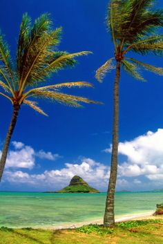 Chinamens Hat in Kaneohe Bay Hawaii-  I could see this from my bedroom window when I lived there.  :)