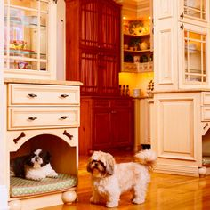 Doesn't everybody always want to be in the kitchen?  Photo: Michael Partenio