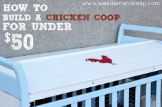 How To Build A Chicken Coop For Under $50