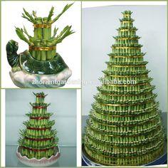 Wholesale tower layered lucky bamboo tree dracaena sanderiana, indoor ornamental aquatic water plants decoration.
