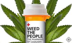 Weed The People: Ricki Lake's Documentary Highlights Cannabis Extracts And Cancer