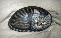 this cat looks so real! rockpainting