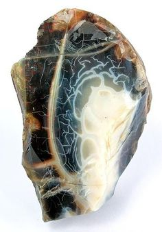 Opal / Virgin Valley District, Humboldt Co., Nevada I seriously think opals have to be one of the most beautiful things on the planet