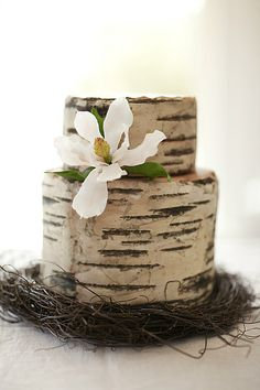 5 Judit Meron-Woodland Wood-grain Wedding Cake Decoration Idea Painted Fondant