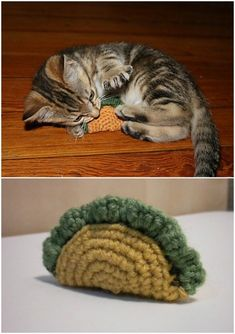 15 ideas for crochet cat bed pattern dog sweaters Crochet Diy, Chat Crochet, Crochet Mignon, Crochet Cat Toys, Crochet Simple, Easy Crochet Patterns, Crochet Gifts, Fun Patterns, Pattern Ideas