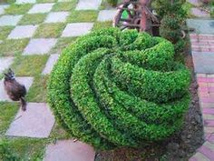 Topiary garden decorations