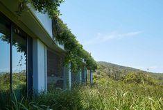 LinkedIn Roof Gardens, Sunshine Coast, Australia, Plants, Plant, Rooftop Gardens, Planting, Planets