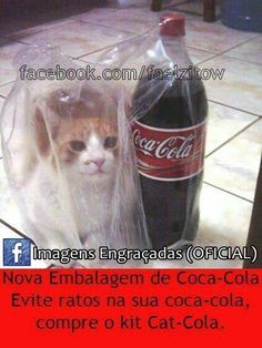 get out of there cat. you are not the world's most refreshing beverage. you're just fuzzy. no one wants fuzzy drinks. Coca Cola, Refreshing Drinks, Cats And Kittens, Fur Babies, Funny Cats, Water Bottle, Kitty, Beverage, Rats