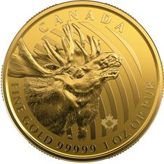 """Royal Canadian Mint Announces New Incuse Maple Leaf Bullion Coins and the Latest Issue of its Popular """"Call of the Wild"""" Pure Gold Series Buy Gold And Silver, Mint Gold, Bullion Coins, Gold Bullion, Canadian Gold Coins, Maple Leaf, Coin Design, Coin Art, Finance"""