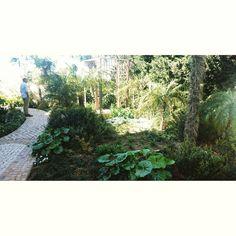 Waiting Springtime #gardening #jpdesigner #design #garden #fashion #Marbella #gardener #Luxury #luxurylife