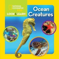 Ocean Creatures by National Geographic Kids - 2/25/2016