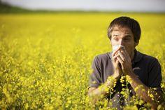 Allergie au pollen : 6 astuces naturelles pour que la dispersion des graminées vous affecte le moins possible