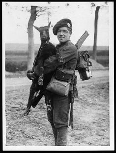 A young soldier of the Royal Scots Regiment holding a black goat kid. As the French farmers were forced to flee their homes many animals were inevitably abandoned. Some undoubtedly ended up in the cooking pot, but others like this kid seem to have been adopted as good luck mascots. WWI