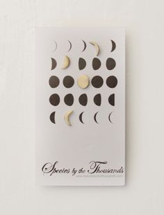 Moon Phase Stud Earrings | Erica Bradbury | Species By The Thousands