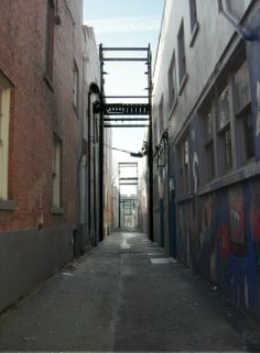 """Alley behind Xavier's Shop -- """"New and Improved"""""""