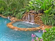 Pool Tropical Landscaping Ideas tropical landscaping ideas around pool |  trees surround the