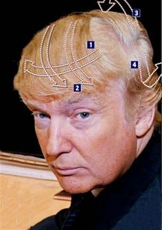 A step-by-step guide to the gravity-defying Donald Trump combover Trump Combover, Donald Trump Hair, Donald Trump Comb Over, Going Bald, Demotivational Posters, Bad Hair Day, Make Me Smile, Your Hair, Funny Pictures