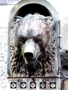 Matkojeni blogi: Yrmyjä karhuja