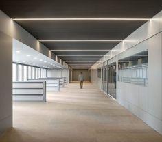 Cruz y Ortiz Arquitectos, Pedro Pegenaute · Pablo Picasso Offices