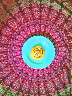Peacock or a pretty plate? There is art all around us, if only we take a look! Here's a happy cinnamon roll on our Bubble plate in Titicaca Turquoise No 7!  #bubble #bubblecorner #bubbledinnerware #viedebubble #colourful #lifeofcolour #blue #turquoise #lunch #dinner #peacock #pretty #love #art #bubbleart