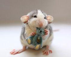 adorable!  mouse with his teddy bear via Chris Dangtran