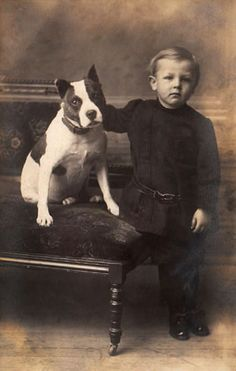 Boy & Pit Bull Pose. Pit Bulls were breed to be family dogs and protectors so they were used as baby sitters.