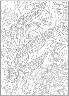 34 best color by numbers images on Pinterest | Coloring books ...